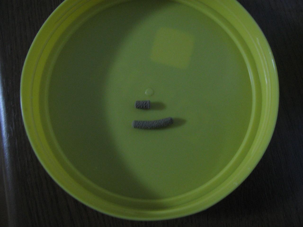 レプトミン大きさ比較