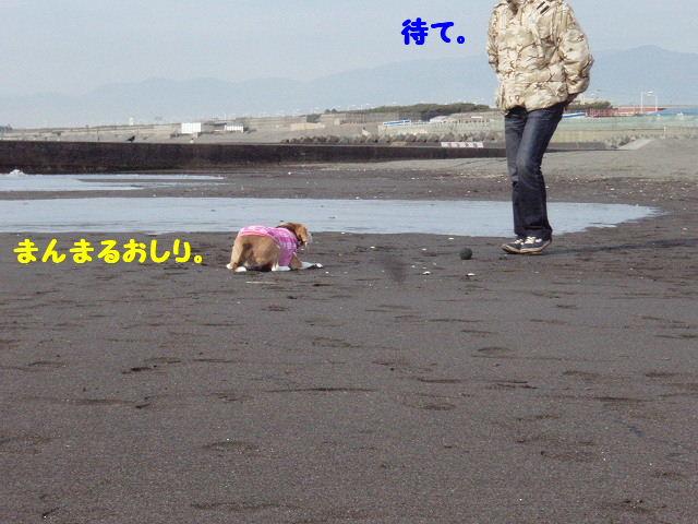 2008_01200036.jpg
