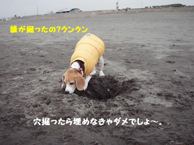 2008_01210022.jpg
