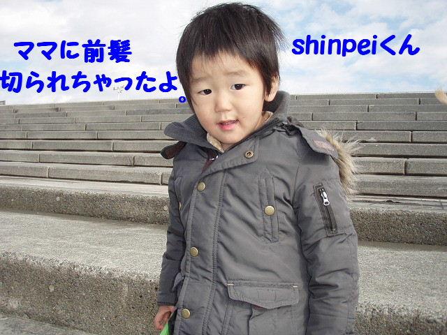 2008_01240019.jpg