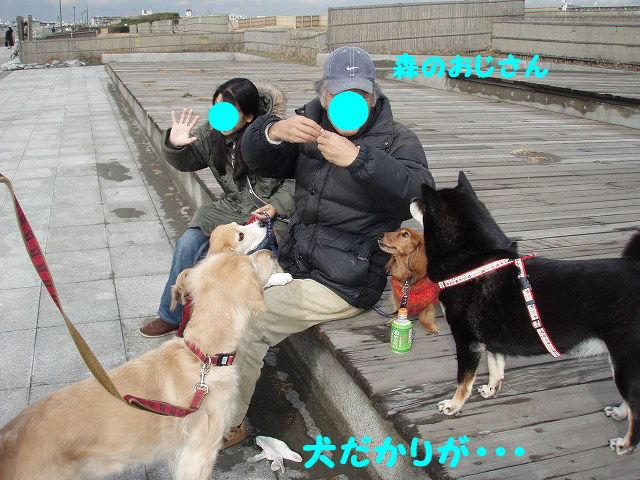 2008_01240032.jpg