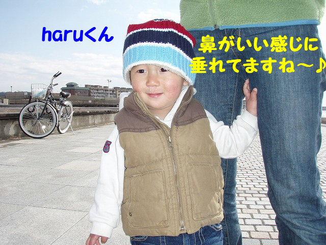 2008_01240035.jpg
