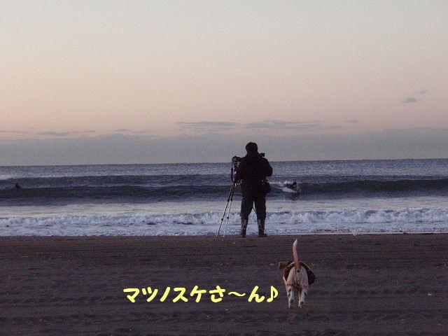 2008_01250002.jpg