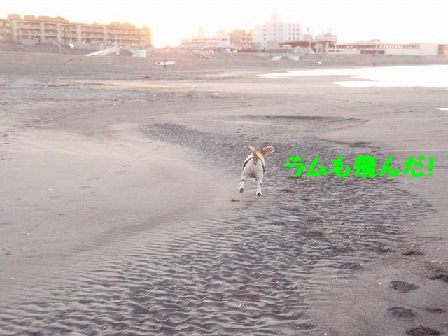 2008_01250026.jpg