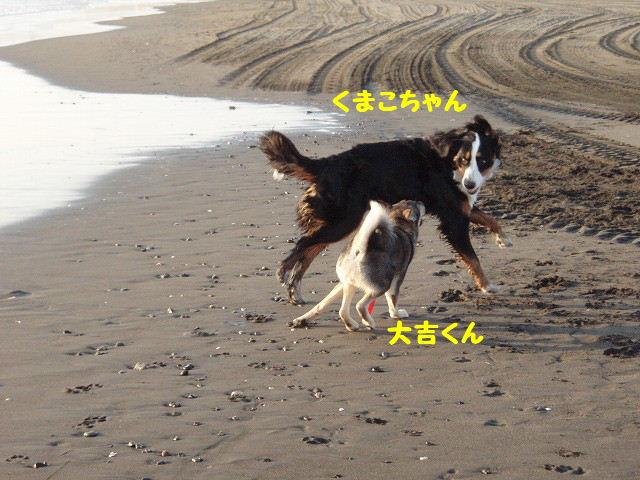 2008_01250076.jpg