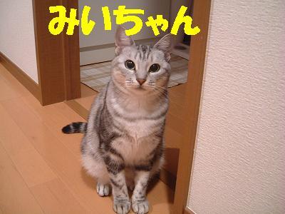 1254142005177969.jpg