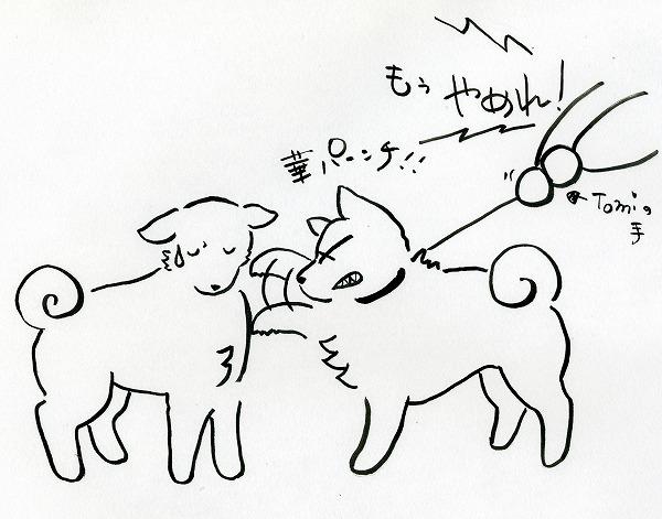 華パンチ.jpg
